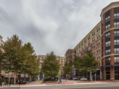 Falls Church Rental For Rent: 444 W. Broad Street W #215