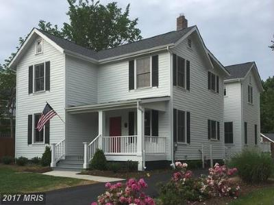 Falls Church Single Family Home For Sale: 816 Park Avenue