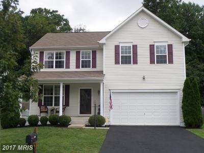 Fredericksburg Single Family Home For Sale: 1008 Bakersfield Lane