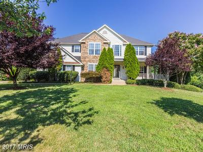 Fredericksburg City Single Family Home For Sale: 2101 Hays Street