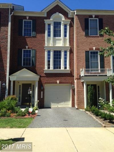 Fredericksburg Rental For Rent: 1037 Hotchkiss Place