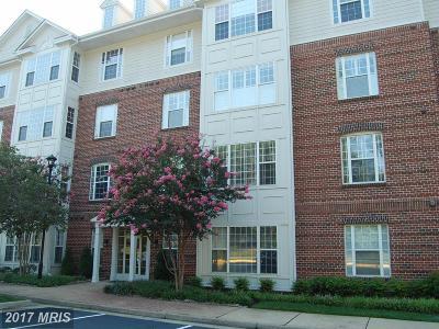 Fredericksburg Condo For Sale: 701 Cobblestone Boulevard #T7