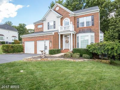 Fredericksburg Single Family Home For Sale: 1300 Preserve Lane