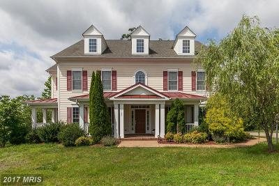 Fredericksburg Single Family Home For Sale: 1100 Downman Place