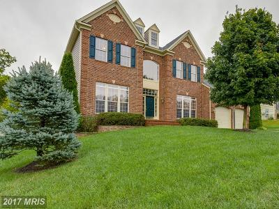 Fredericksburg Single Family Home For Sale: 1017 Kensington Circle E