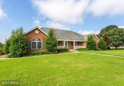 Fredericksburg Single Family Home For Sale: 100 Chase Lane