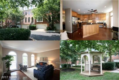 Fairfax Townhouse For Sale: 10553 James Wren Way