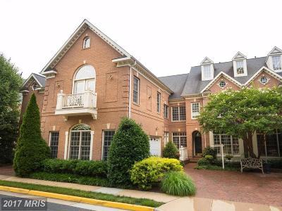 Fairfax Townhouse For Sale: 3869 Lewiston Place