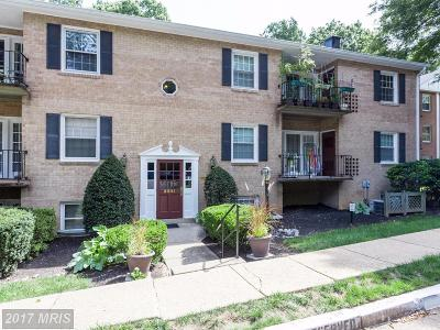 Fairfax Condo For Sale: 3901 Lyndhurst Drive #102
