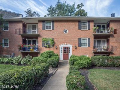Fairfax Condo For Sale: 3846 Lyndhurst Drive #101