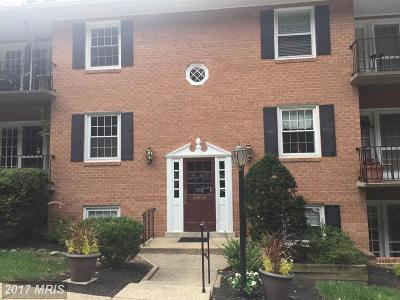 Fairfax Condo For Sale: 3814 Lyndhurst Drive #202