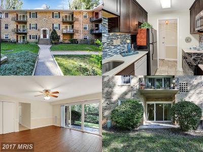 Fairfax Condo For Sale: 3800 Lyndhurst Drive #102