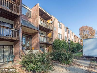 Fairfax Rental For Rent: 10724 West Drive #302