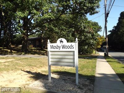 Fairfax Rental For Rent: 10171 Mosby Woods Drive #300