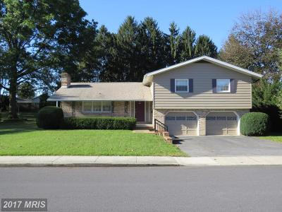 Chambersburg PA Single Family Home For Sale: $230,000