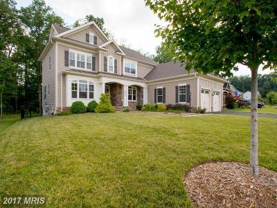 Warrenton Single Family Home For Sale: 6557 Wellspring Court