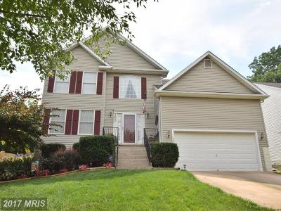 Warrenton Single Family Home For Sale: 242 Breezewood Drive