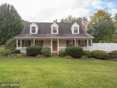 Warrenton Single Family Home For Sale: 164 Shirley Avenue