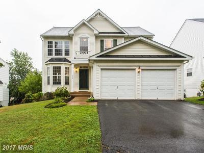 Warrenton Single Family Home For Sale: 530 Estate Avenue