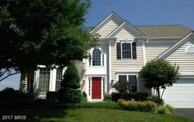 Warrenton Single Family Home For Sale: 6428 Whites Mill Lane