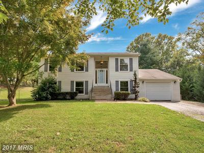 Fauquier Single Family Home For Sale: 6400 Lancaster Drive