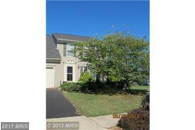 Bristow, Haymarket, Gainesville, Nokesville, Bealeton, Manassas Rental For Rent: 6564 America Way