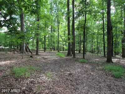 Rappahannock, Fauquier, Madison, Culpeper Residential Lots & Land For Sale: Baldwin Ridge Road