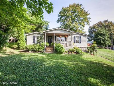 Fauquier Single Family Home For Sale: 7402 Bear Wallow Road