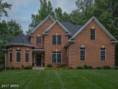 Fauquier Single Family Home For Sale: 6654 Colonnades Drive