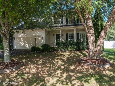 Warrenton Single Family Home For Sale: 420 Singleton Circle