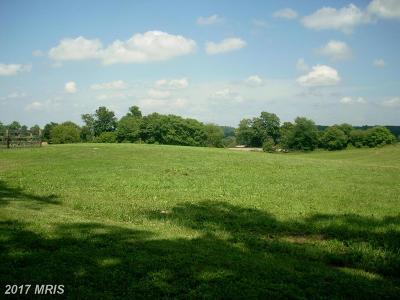 Residential Lots & Land For Sale: 4003 Rectortown Road