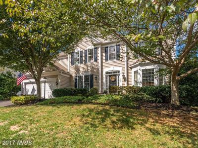 Fauquier Single Family Home For Sale: 6400 Cedar Brook Lane