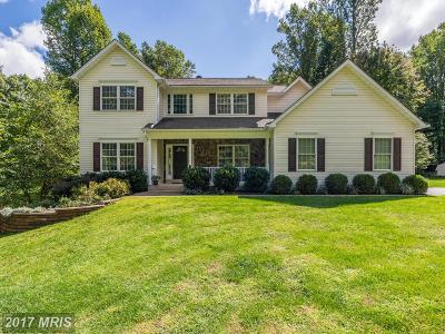 Fauquier Single Family Home For Sale: 9085 Groundhog Lane