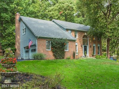 Warrenton Single Family Home For Sale: 7164 Auburn Mill Road