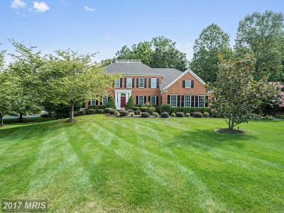 Fauquier Single Family Home For Sale: 6813 Tanglewood Drive