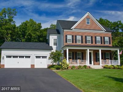 Fauquier Single Family Home For Sale: 4439 Spring Run Road