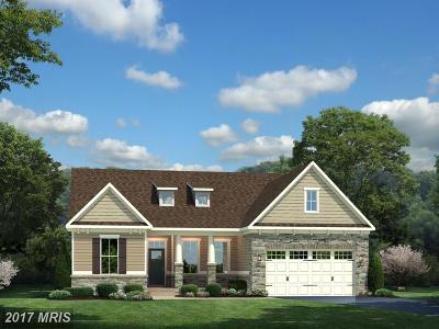 Warrenton Single Family Home For Sale: Warrenton Chase Drive
