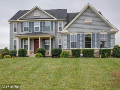 Warrenton Single Family Home For Sale: 7495 Edington Drive