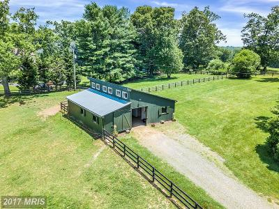 Warrenton Farm For Sale: 8699 Green Rd