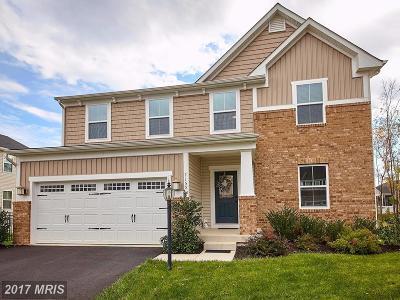 Warrenton Single Family Home For Sale: 7155 Shepherdstown Road