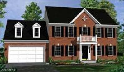 Warrenton Single Family Home For Sale: Imagination Way