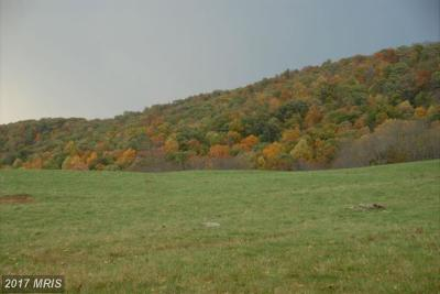 Rappahannock, Fauquier, Madison, Culpeper Residential Lots & Land For Sale: 3585 Carrington Road