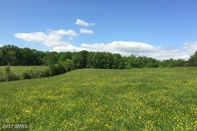 Rappahannock, Fauquier, Madison, Culpeper Residential Lots & Land For Sale: Olinger Road