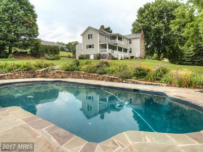 Rappahannock, Fauquier, Madison, Culpeper Single Family Home For Sale: 4201 Fox Den Lane