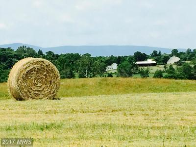 Rappahannock, Fauquier, Madison, Culpeper Residential Lots & Land For Sale: 11069 Colline Drive
