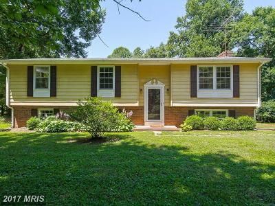 Fauquier Single Family Home For Sale: 6244 Park Place