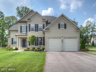 Warrenton Single Family Home For Sale: 4455 Spring Run Road