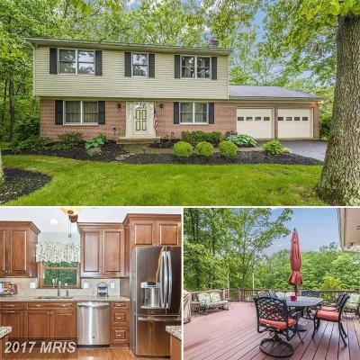 Mount Airy Single Family Home For Sale: 13535 Old Annapolis Road