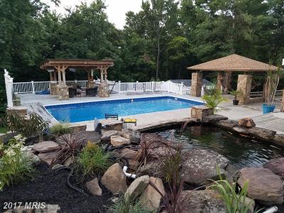 Ijamsville Single Family Home For Sale: 10010 Lewisdale Road
