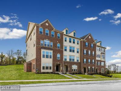 Ijamsville Townhouse For Sale: 1006 Beerse Street #D